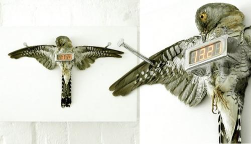 Michael Sans: Cuckoo Clock
